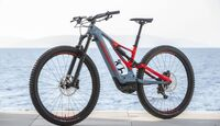 EM Specialized Turbo Levo 2019 MS Bild 1